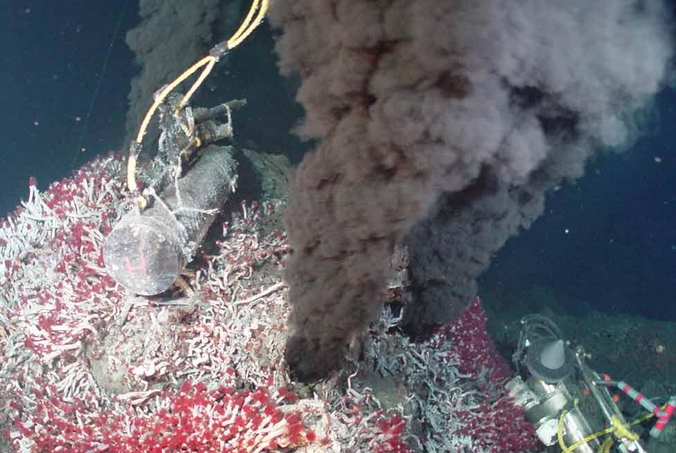 The Habitats of The Five Deeps